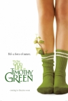 The Odd Life of Timothy Green move poster